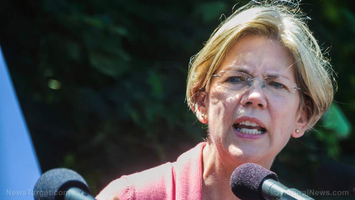 """Elizabeth Warren and other Democrats warned about Dominion """"vote switching"""" and election fraud LAST YEAR 1"""