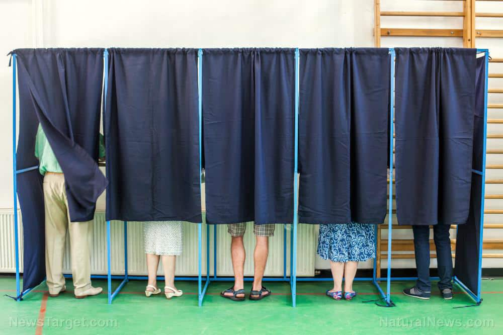 Internet sleuths use Michigan government website to check for dead voters 1