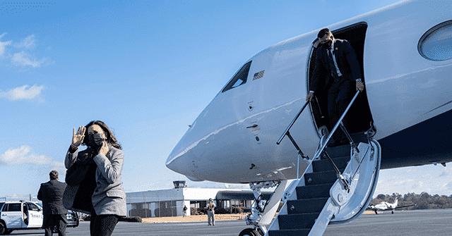 Kamala Harris Stumps in Georgia: '2020 Ain't over Until January 5th' 1