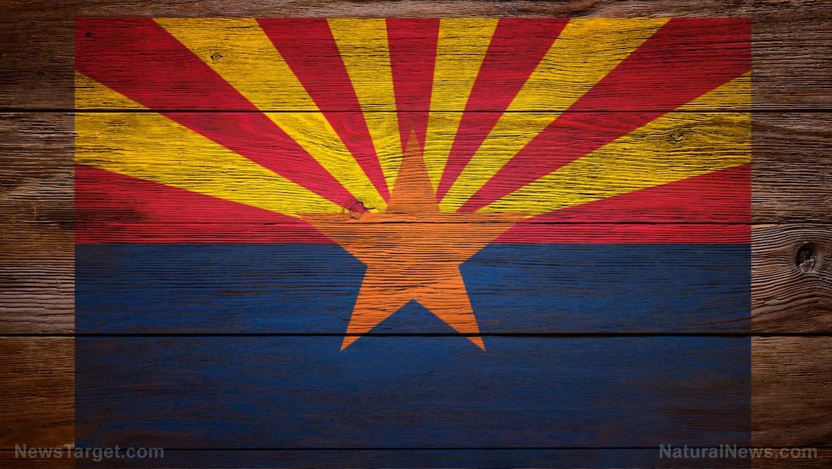 """Forensic analysis: More than 790,000 votes were """"laundered"""" in Arizona 1"""