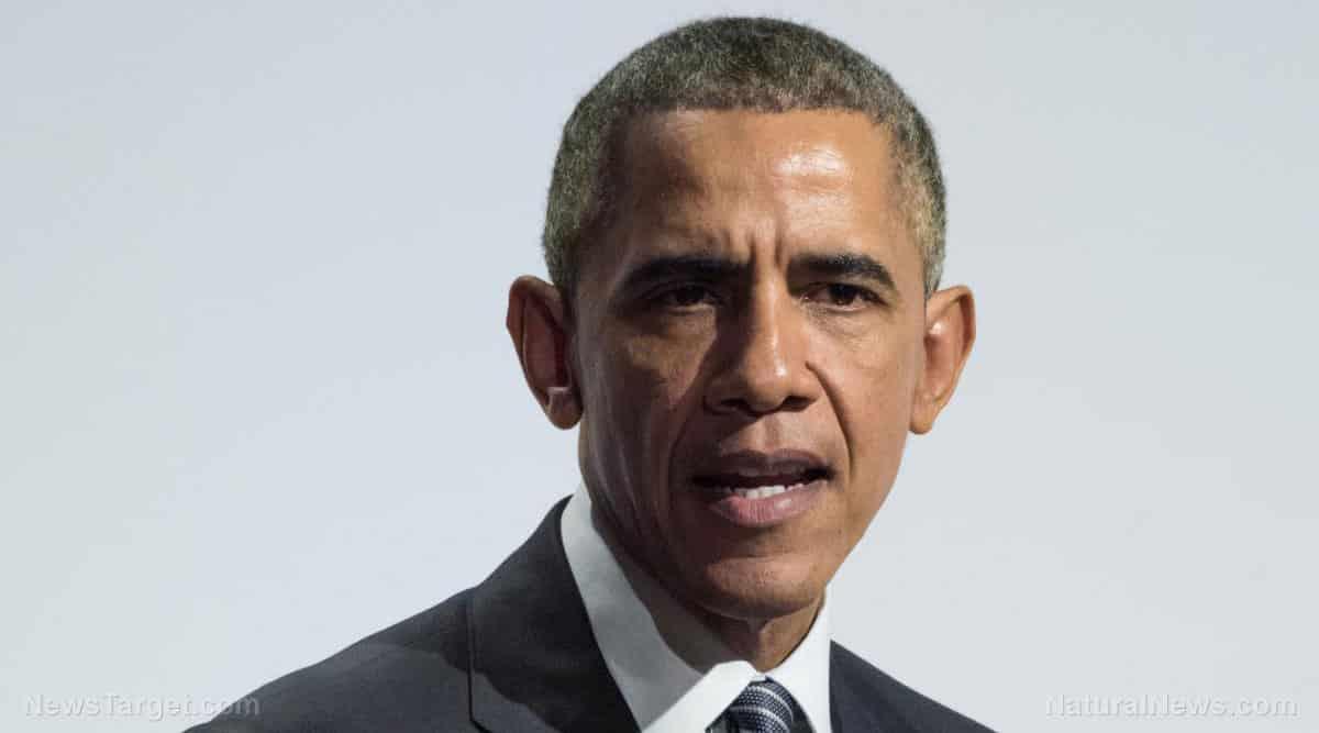 Obama and Pelosi didn't win elections in the last decade, it was Dominion 1