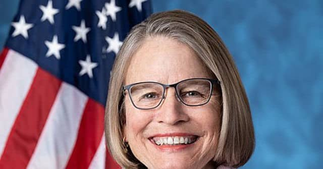 Mariannette Miller-Meeks Files to Dismiss Democrat's Challenge to Iowa Second District Election Results 1