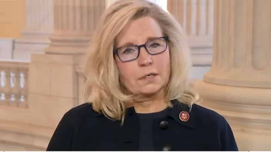 Neocon Rep. Liz Cheney Continues Using Liberal Talking Points to Trash Republican Voters 1