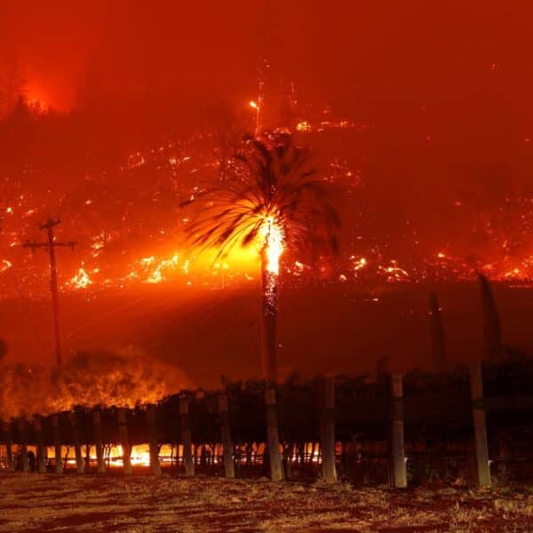 California Collapsing 1