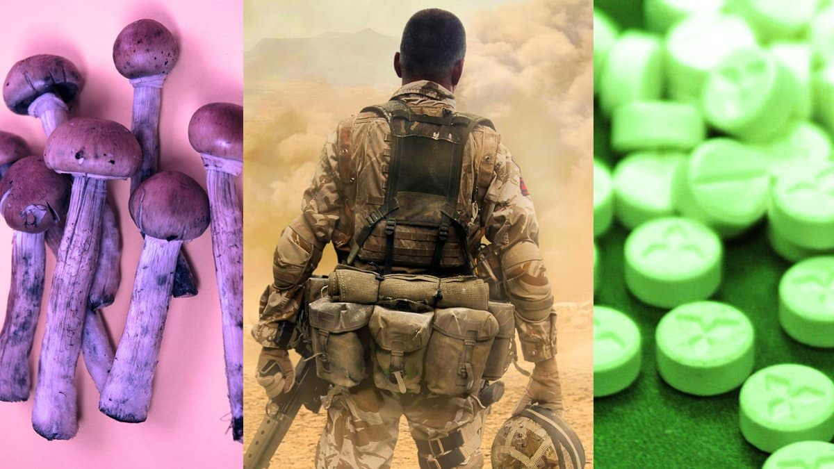 California Bill Backed by PTSD War Veterans Groups Would Legalize Psychedelics Statewide 1