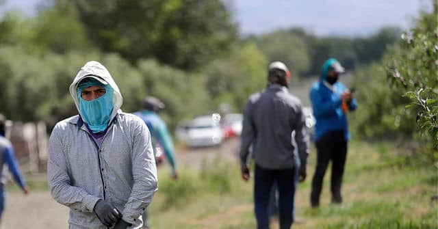 30 GOP Reps. Vote for Farmworker Amnesty, Replacement Foreign Workforce 1