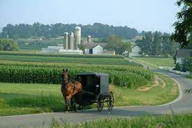"""An Amish Community In Pennsylvania Has Reached """"Herd Immunity"""" 1"""