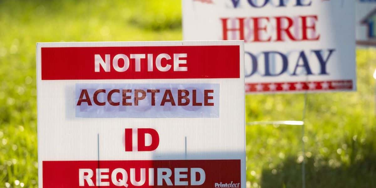 Dems push to eliminate 'racist' voter ID laws that Americans overwhelmingly support — including huge majorities of black, minority voters: poll 1
