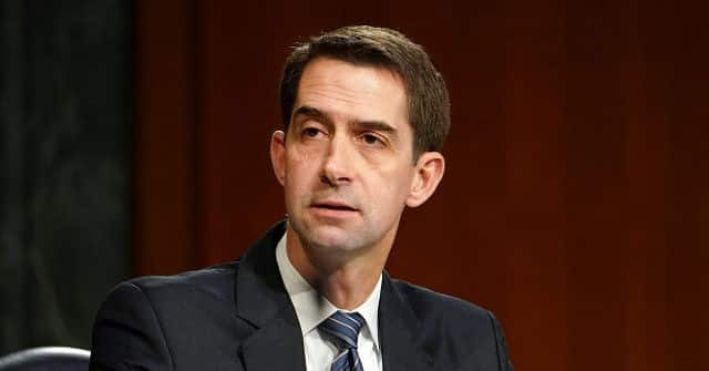 Cotton: Dems Going to Pay the Price at the Ballot Box for Biden's 'Extremely Unpopular' Immigration Policy 1