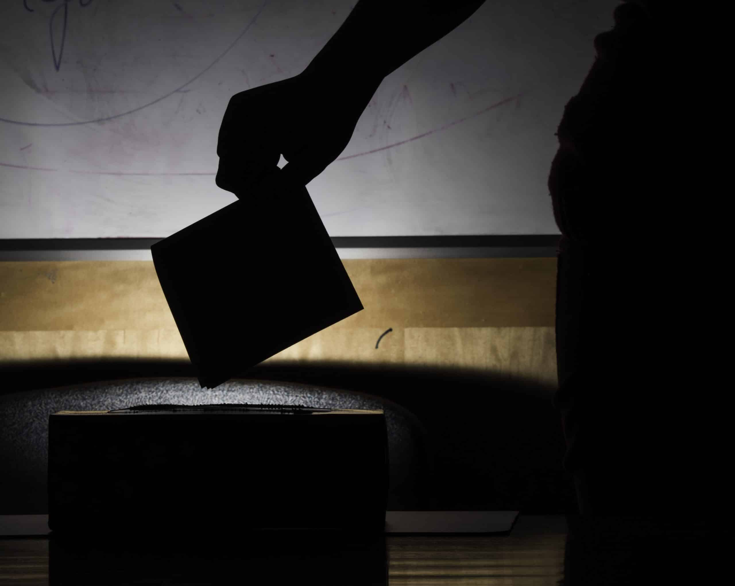 Democrats Sue To Block AZ Election Audit. 1