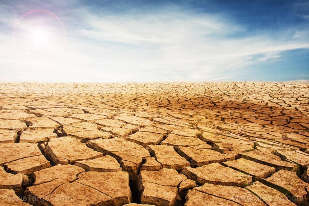 California's San Joaquin Valley, once fertile farming ground, now succumbing to drought 1
