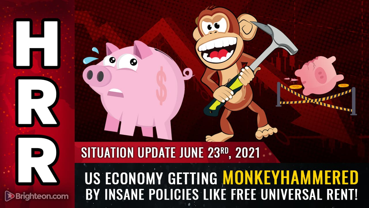 US economy will get MONKEYHAMMERED by insane policies like free universal rent, now announced in California 1