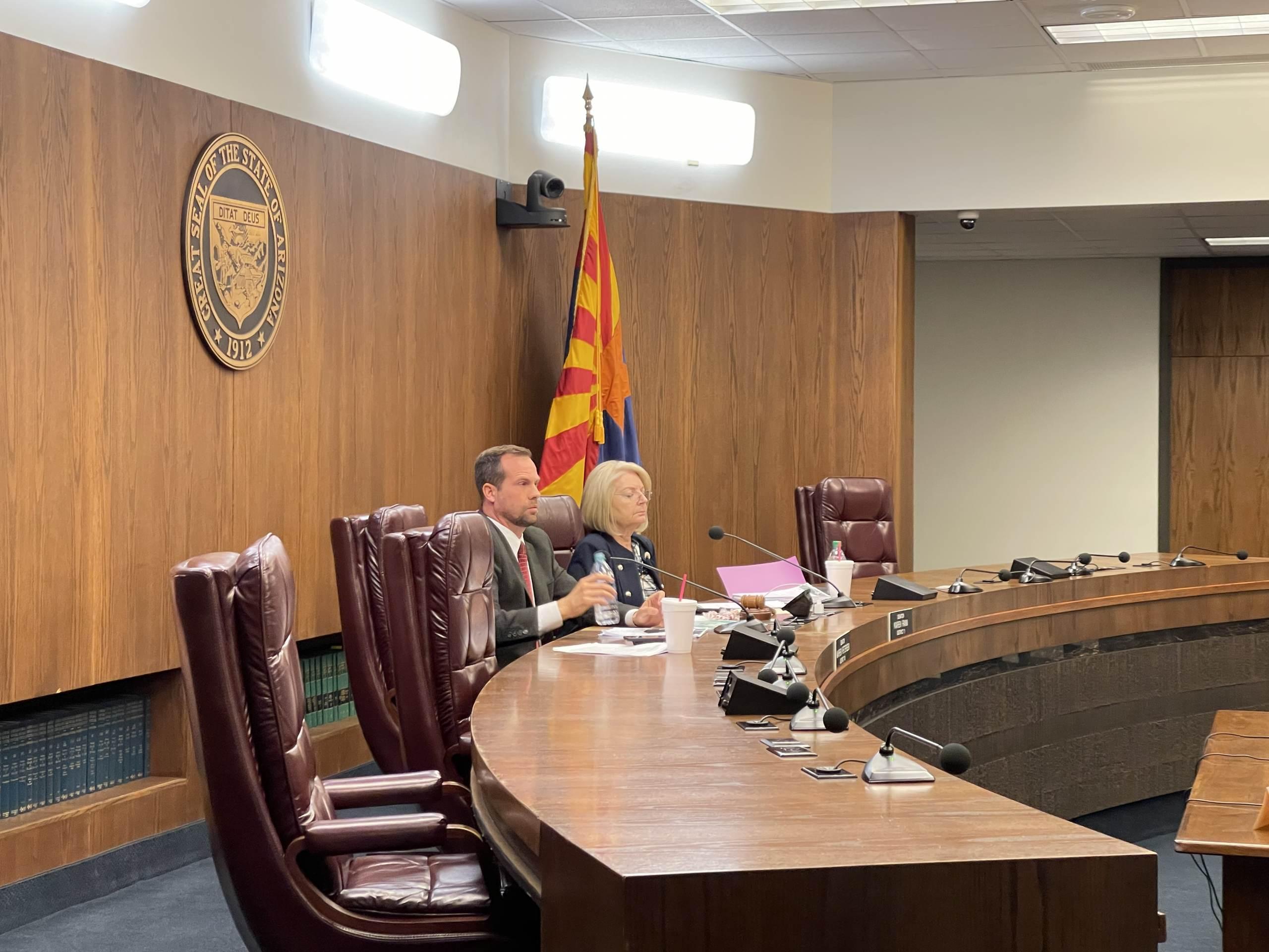AZ State Sen. Wendy Rogers Calls for New Election – Smacks Down Fake News Bret Baier 1