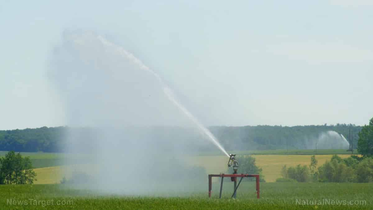 California moves to regulate private agricultural wells, constrict water usage and control food production 1