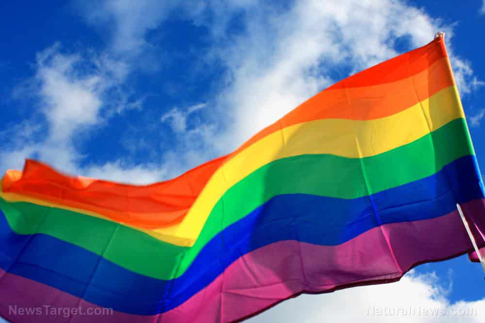 """PRONOUNS PUKED: California court strikes down law that punishes the """"misgendering"""" of LGBT 1"""