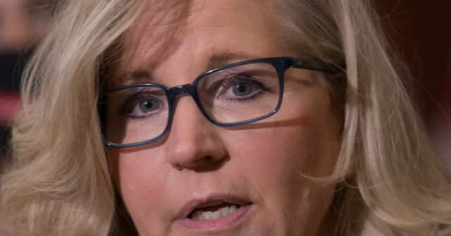 Exclusive -- Poll: Liz Cheney's Polling Plummeting with Wyoming Republican Voters 1