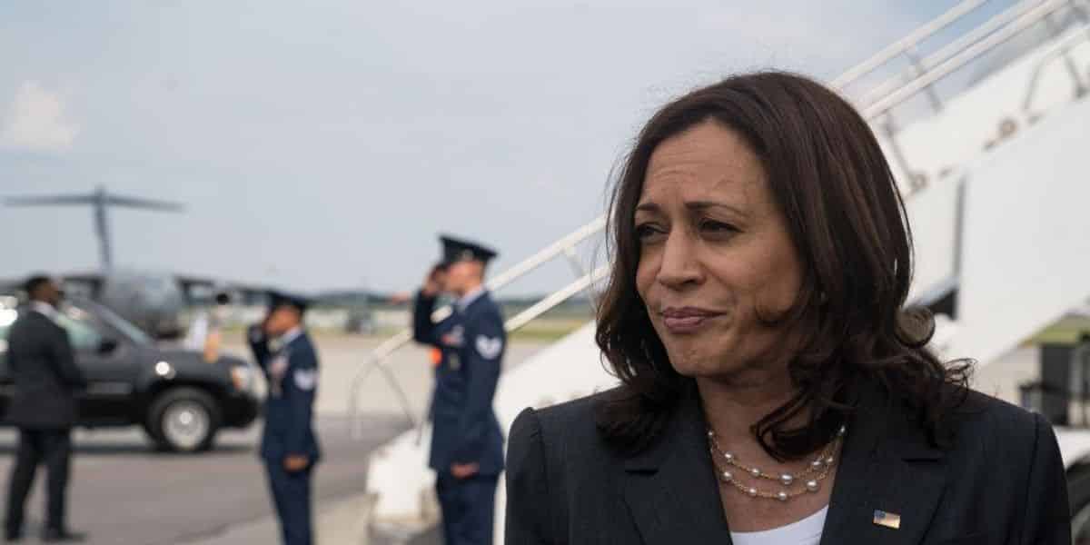 'Out of touch' Kamala Harris gets smashed for saying she opposes voter ID because rural Americans don't have access to photocopiers 1
