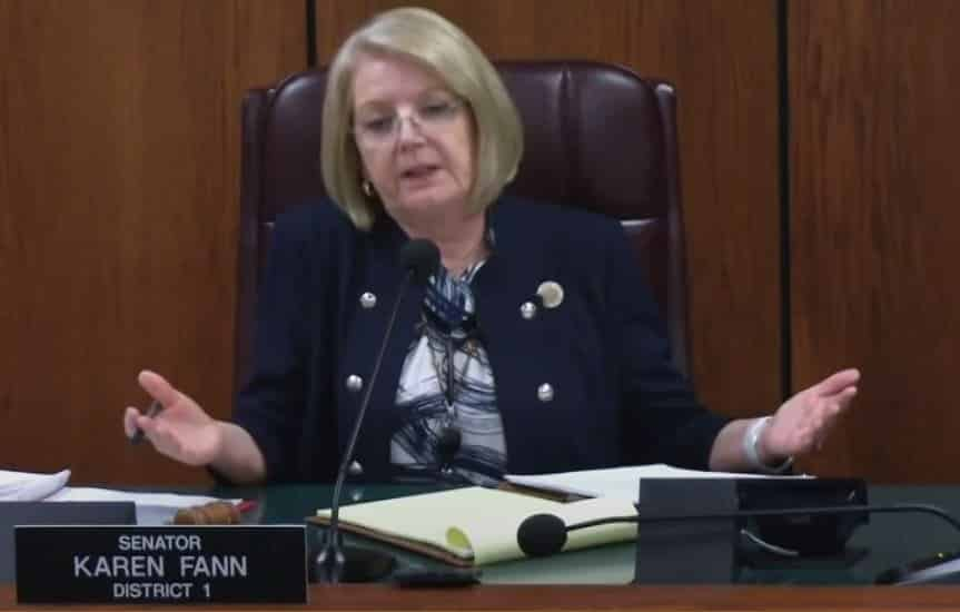 LIVE STREAM VIDEO: Arizona Senate Hearing on Maricopa County Audit Results at 10 AM PT or 1 PM ET 1