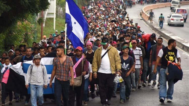 Democrats Planning to Ram Through Amnesty for Eight Million Illegal Immigrants With 50 Votes Through Budget 1