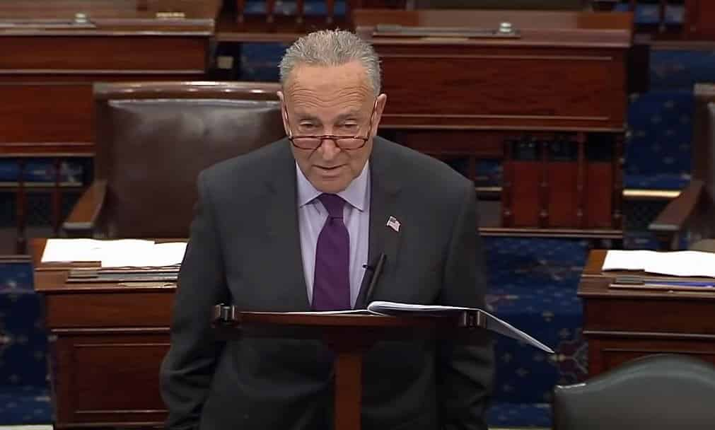 Chuck Schumer Unveils Legislation to Make Voter Fraud Legal in the US (VIDEO) 1